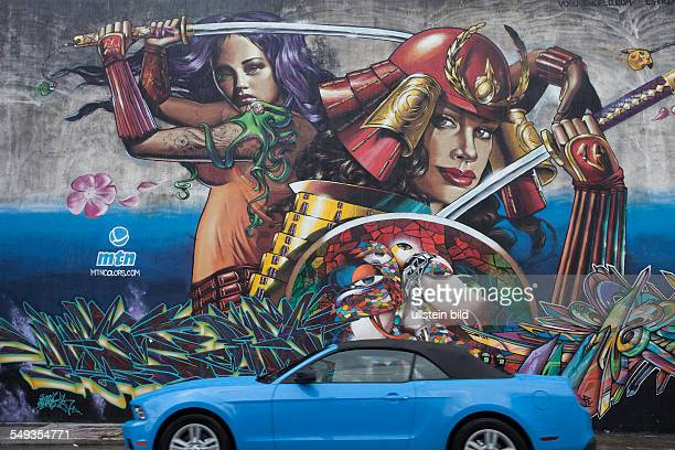Murals in the art district of Wynwood in Miami Florida