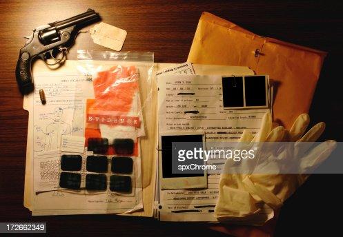 Murder Case Interface