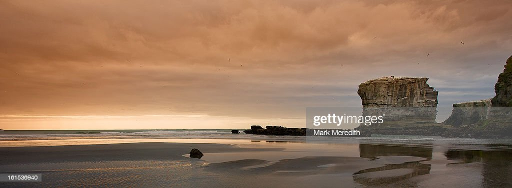 Muriwai Sundown : Stock Photo