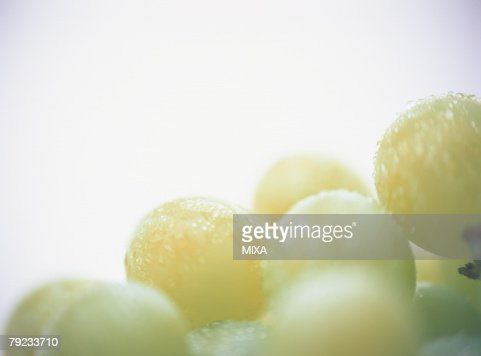 Muscat, close-up : Stock Photo