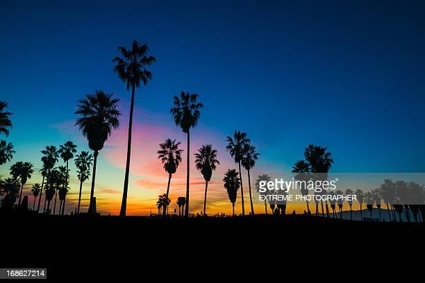Spiaggia di muscolo al tramonto