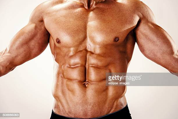 abdominal muscle stock photos and pictures | getty images, Human Body