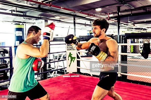 Boxer musculaires avoir joueuse de la séance avec un entraîneur particulier