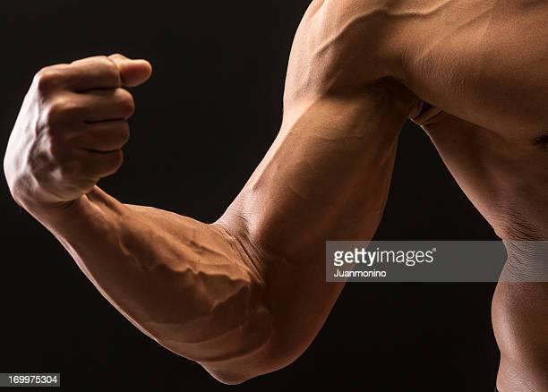 Musculado
