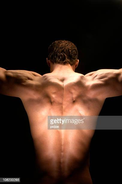 muscular nude male back