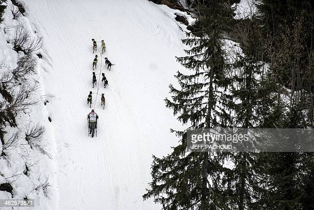 A musher and his dogs take part in a stage of the Grande Odyssee sledding race across the Alps on January 13 2014 in SixtFeraCheval AFP PHOTO / JEFF...