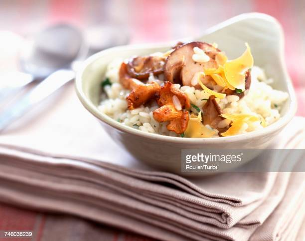 Mushroom and Mimolette cheese risotto