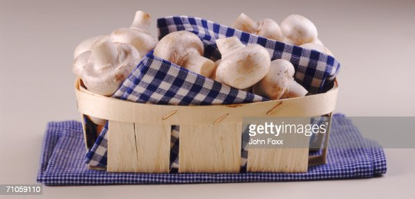 Mushroom with cloth in basket, close-up : Stock Photo