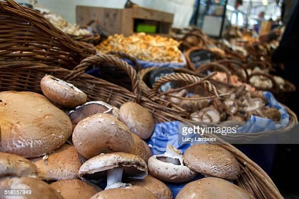 Mushrooms, farmer's market Noordermarkt Amsterdam