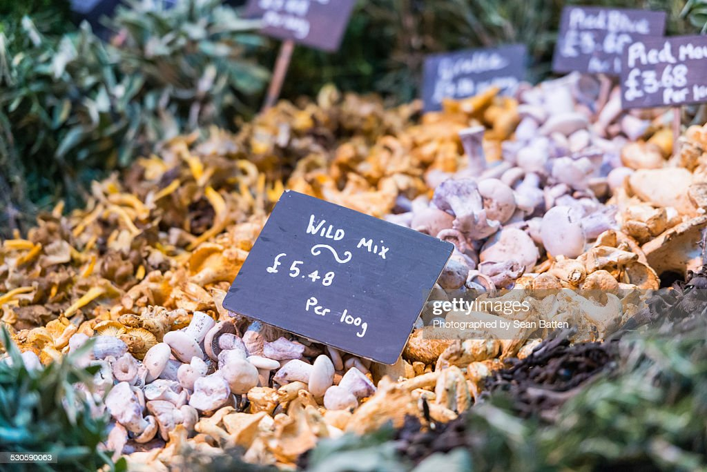 Mushrooms For Sale