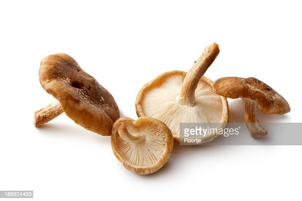 Mushrooms: Shiitake Mushrooms Isolated on White Background