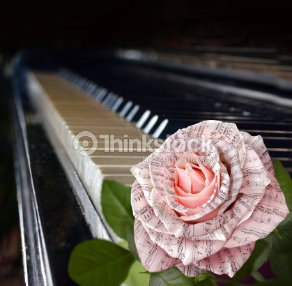 Music Symbol Beautiful Pink Rose With Note On Piano Keyboard Stock
