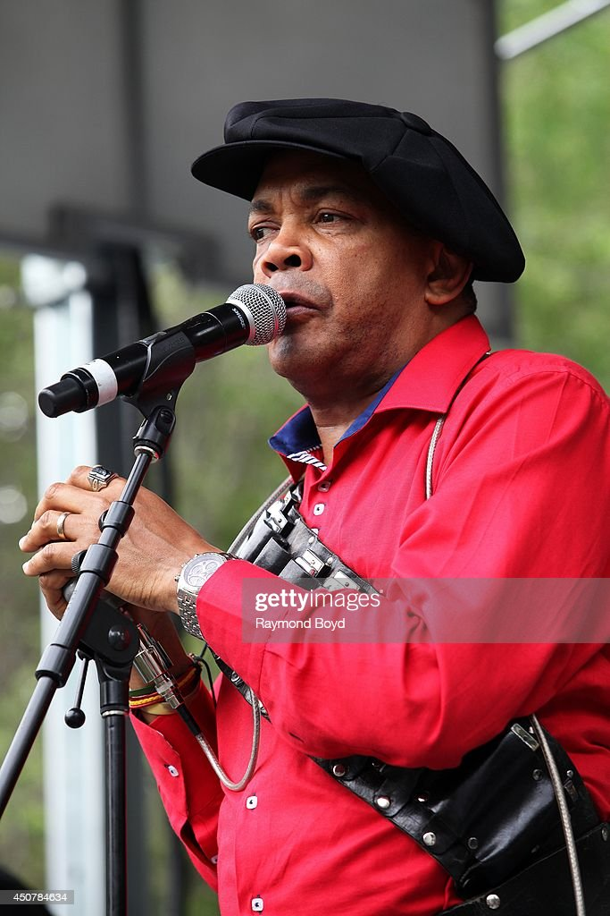 Musician and singer Sugar Blue performs on the Pepsi Front Porch Stage during the 31st Annual Chicago Blues Festival on June 15, 2014 in Chicago, Illinois.