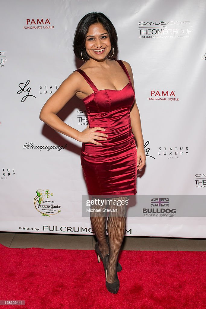 Musician Angeli Kakade attends Celebrate Your Status 2012 by the Happy Hearts Fund at Gansevoort Park Hotel on December 17, 2012 in New York City.