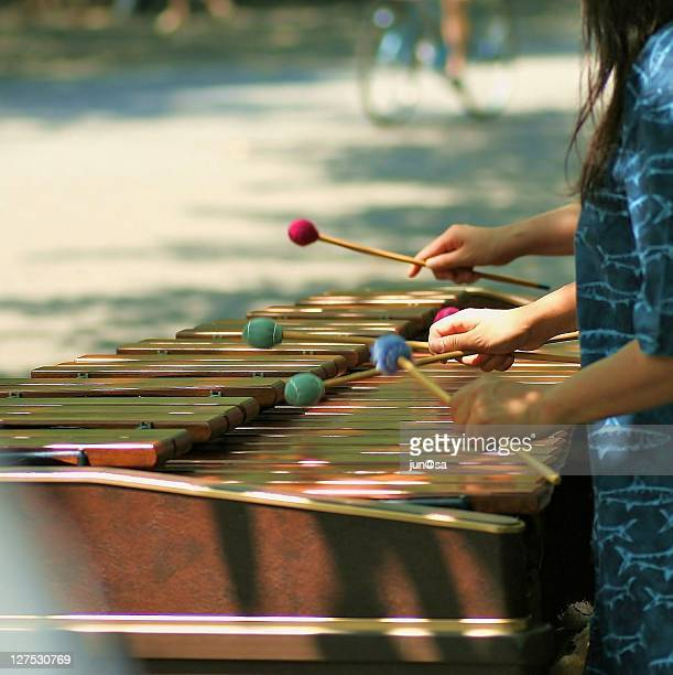 Musician played wooden xylophones