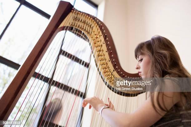Musician playing harp