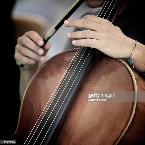 Musician Playing Viola