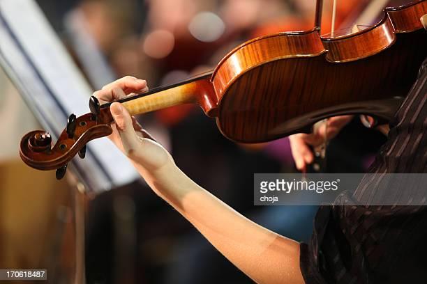 ミュージシャンで遊ぶ concert.violinist