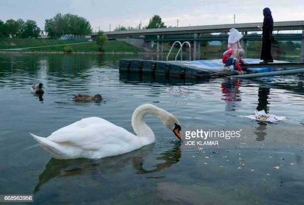 A muslim girls plays at the Danube river near a mosque at Islam Centre of Vienna on April 14 2017 in Vienna Austria A debate is raging in Austria...