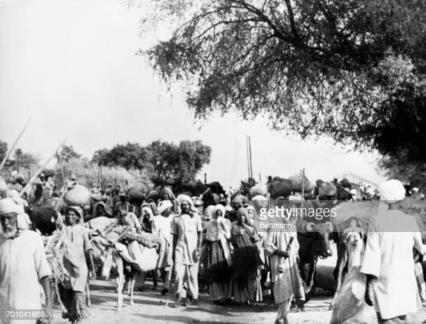 Muslim refugees carrying their personal belongings and leading beasts of burden shown on the long trek to the Muslim free state of Pakistan