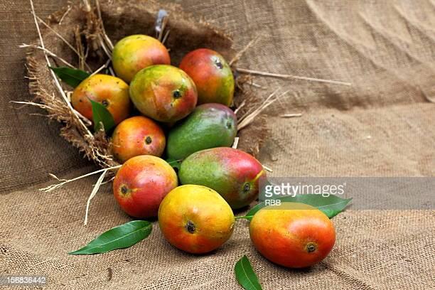 Musrad Mangos