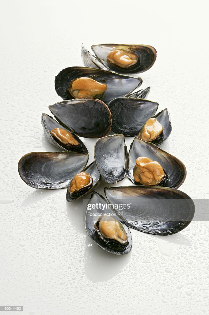 Mussel with drops of water