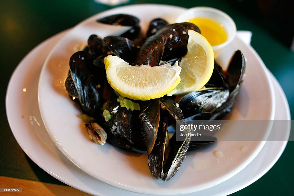 Mussels are seen on a plate March 25 2008 in Charlottetown Prince Edward Island Canada The cultured mussels are grown in mesh stockings that are...