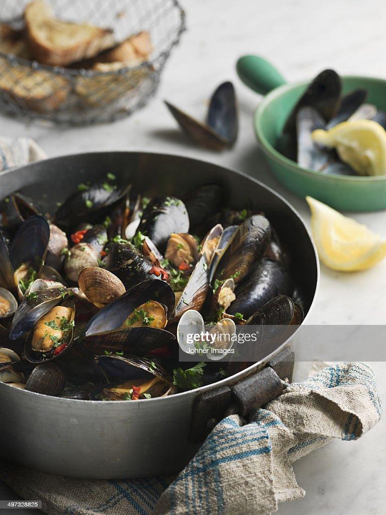 Mussels in pot, Sweden