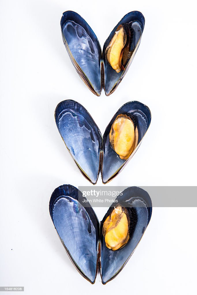 Mussels on a white background. Australia.