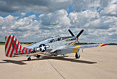 P51 Mustang WW2 Fighter plane two