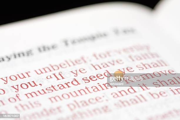Mustard Seed of Faith with Bible Text