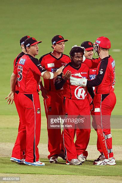 Muttiah Muralitharan of the Renegades is congrtulated by teammates after getting a wicket during the Big Bash League match between the Adelaide...