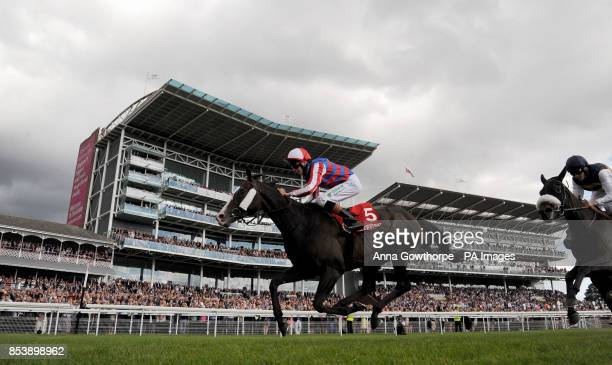 Mutual Regard ridden by Louis Steward win the Betfred Ebor on Betfred Ebor Day during Day Four of the 2014 Welcome To Yorkshire Ebor Festival at York...
