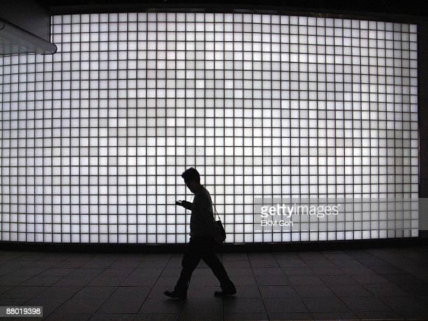 Muybridge glass brick wall