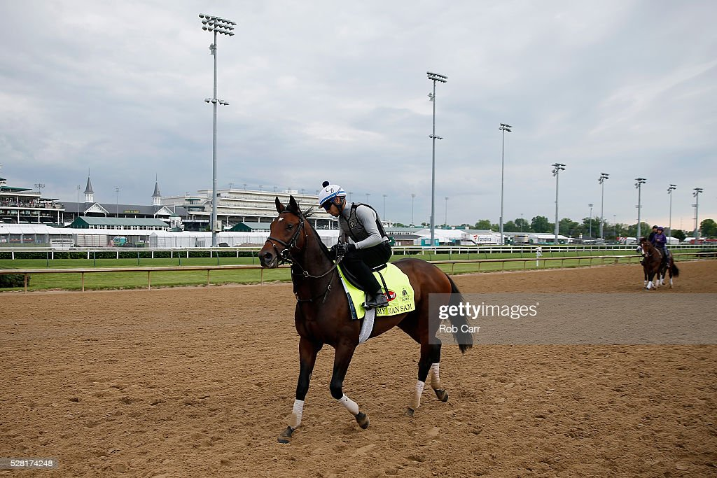 My Man Sam walks on the track during training for the Kentucky Derby at Churchill Downs on May 04, 2016 in Louisville, Kentucky.