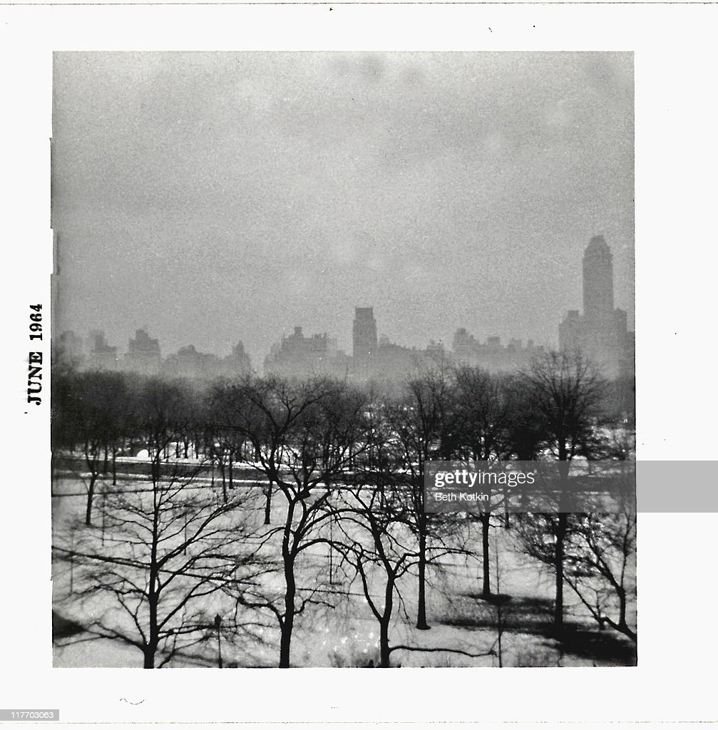 My view of Central Park : Stock Photo