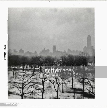 My view of Central Park : Stockfoto