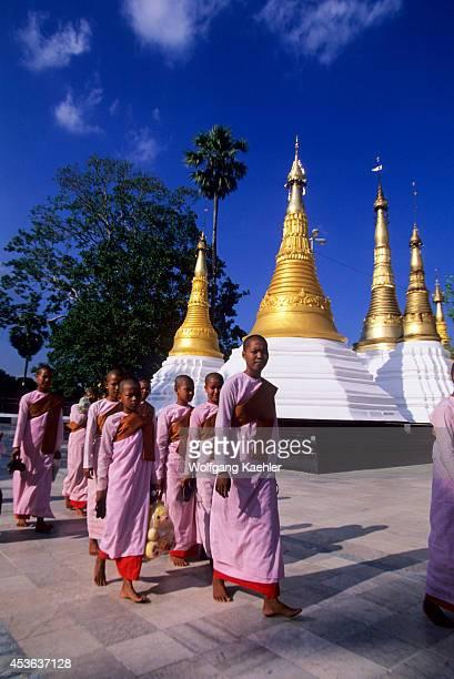 Myanmar Rangoon Shwedagon Pagoda Buddhist Nuns