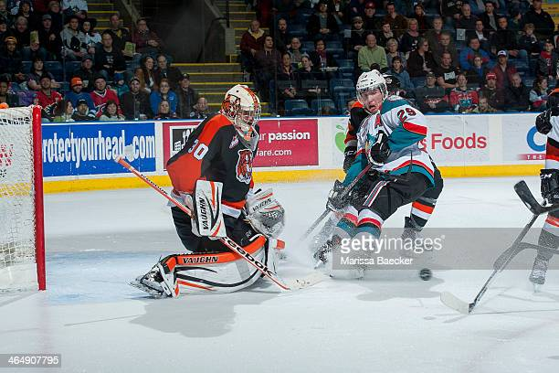 Myles Bell of the Kelowna Rockets looks for the rebound against Marek Langhamer of the Medicine Hat Tigers on January 24 2014 at Prospera Place in...