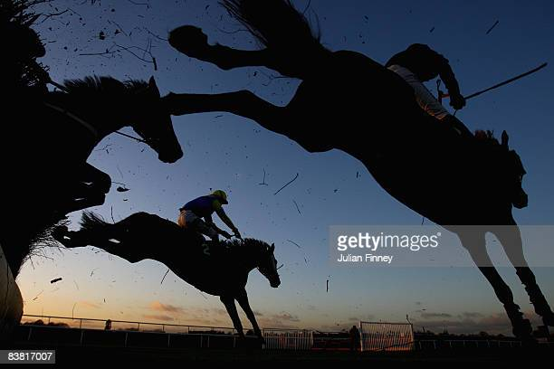 Mylord Collonges ridden by Tony McCoy clears the second to last jump and goes on to win the Ashdown Forest Handicap Chase run at Lingfield Park...