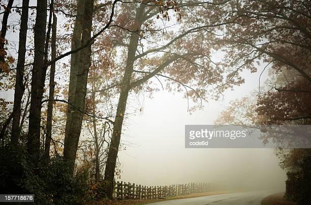 Mystic road in fog