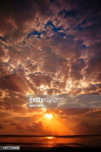 Mystical sun rays from a cloudy morning sky