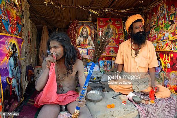 Naga sadhu smokes ganja at Gangasagar Island due to shortage of temporaryt tents Every year thousands of Hindu pilgrims from all over India flock to...