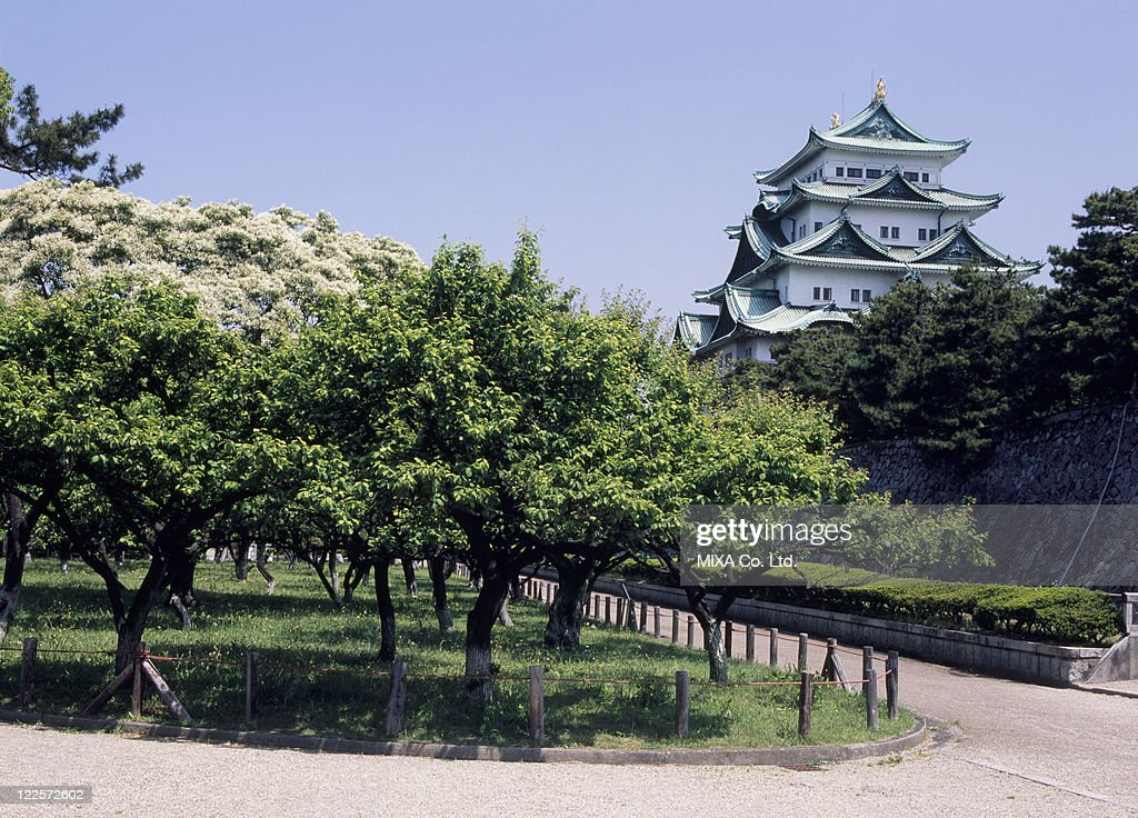 Nagoya Castle, Nagoya, Aichi, Japan