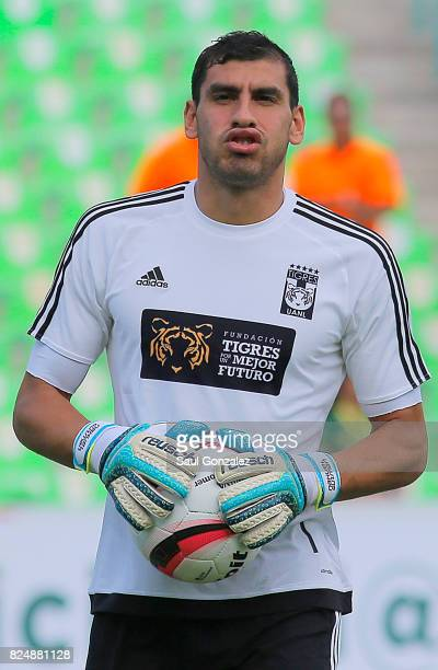 Nahuel Guzman of Tigres looks on during the 2nd round match between Santos Laguna and Tigres UANL as part of the Torneo Apertura 2017 Liga MX at...