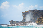Nakalele Blowhole in Maui Hawaii, produces powerful geyser-like water spouts with the waves and tides. Water spewed from the blowhole can rise as high as 100 feet in the air.
