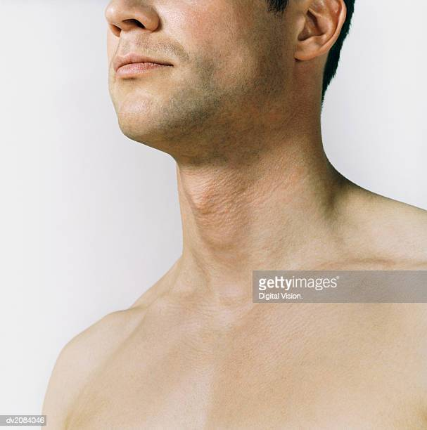 Naked Man's Chest and Neck
