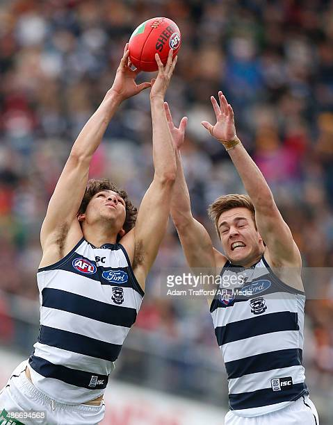 Nakia Cockatoo of the Cats marks the ball ahead of Cory Gregson during the 2015 AFL round 23 match between the Geelong Cats and the Adelaide Crows at...