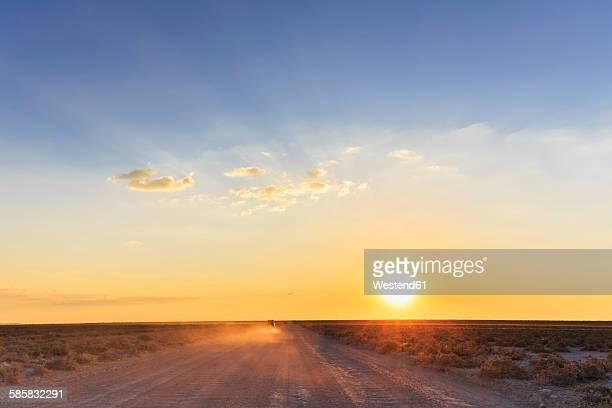 Namibia, Etosha National Park, off-road vehicle driving on gravel road by sunset