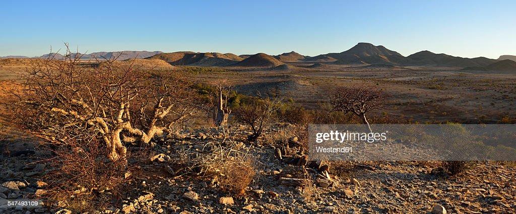 Namibia, Namib Desert, Kaokoland, view over Hartmann Mountains